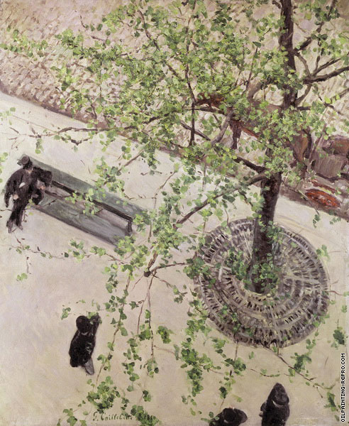 The Boulevard Seen from Above (Caillebotte)