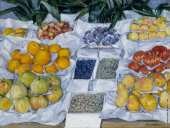 Fruit displayed on a Stand (Caillebotte)