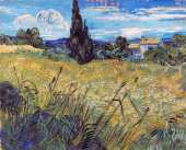 Green Wheat Field with Cypress (Van Gogh)